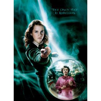 Hermione Granger and Professor Umbridge